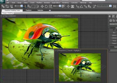 3D Studio Max realizzazione